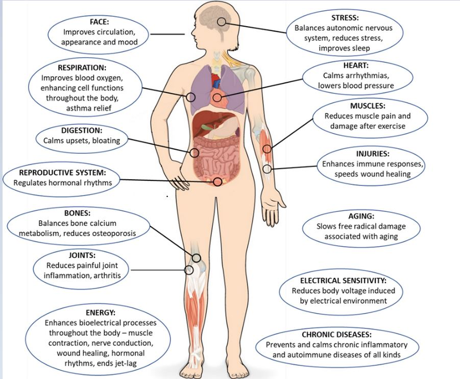 Figure 3: Systemic Benefits of Grounding