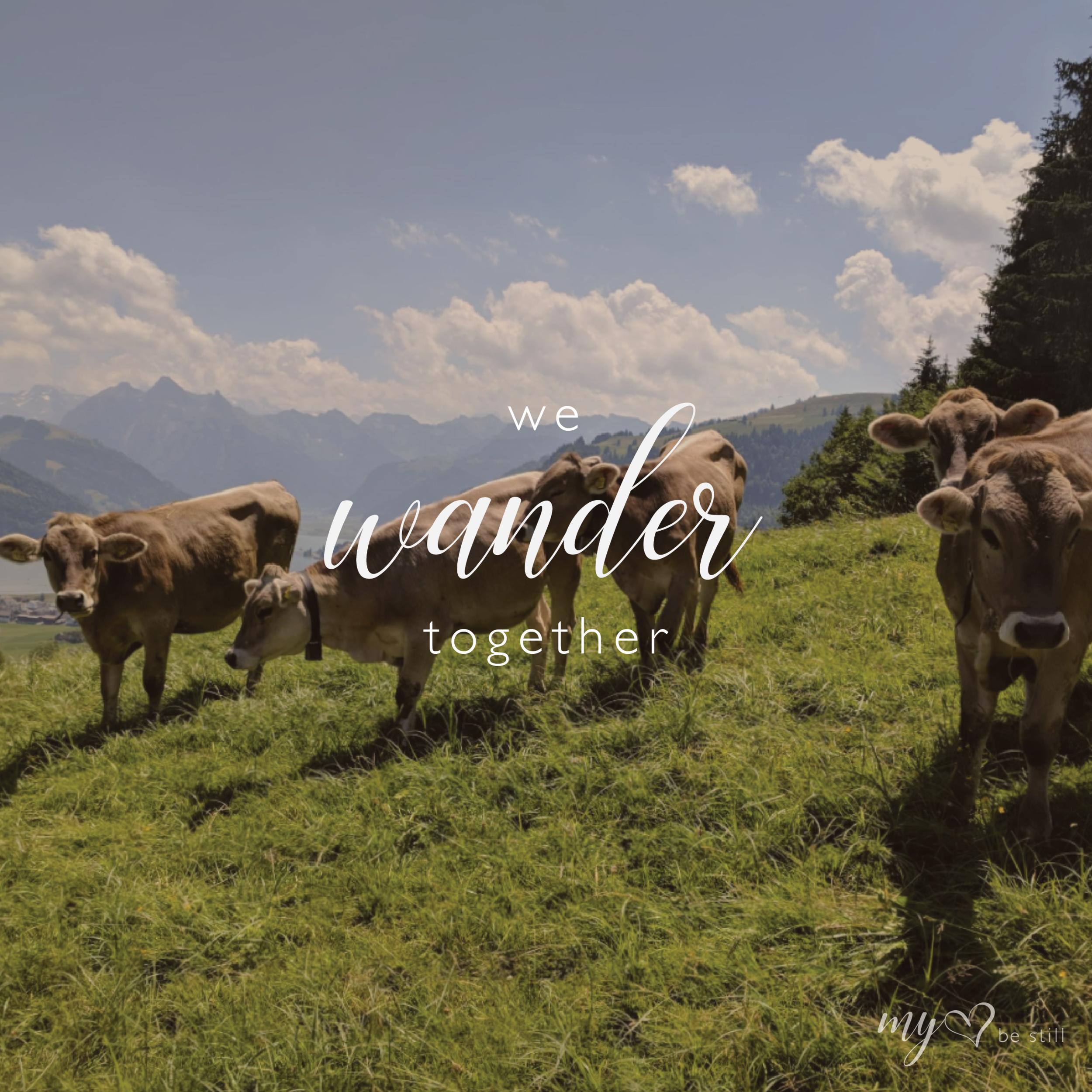 wander-02.png