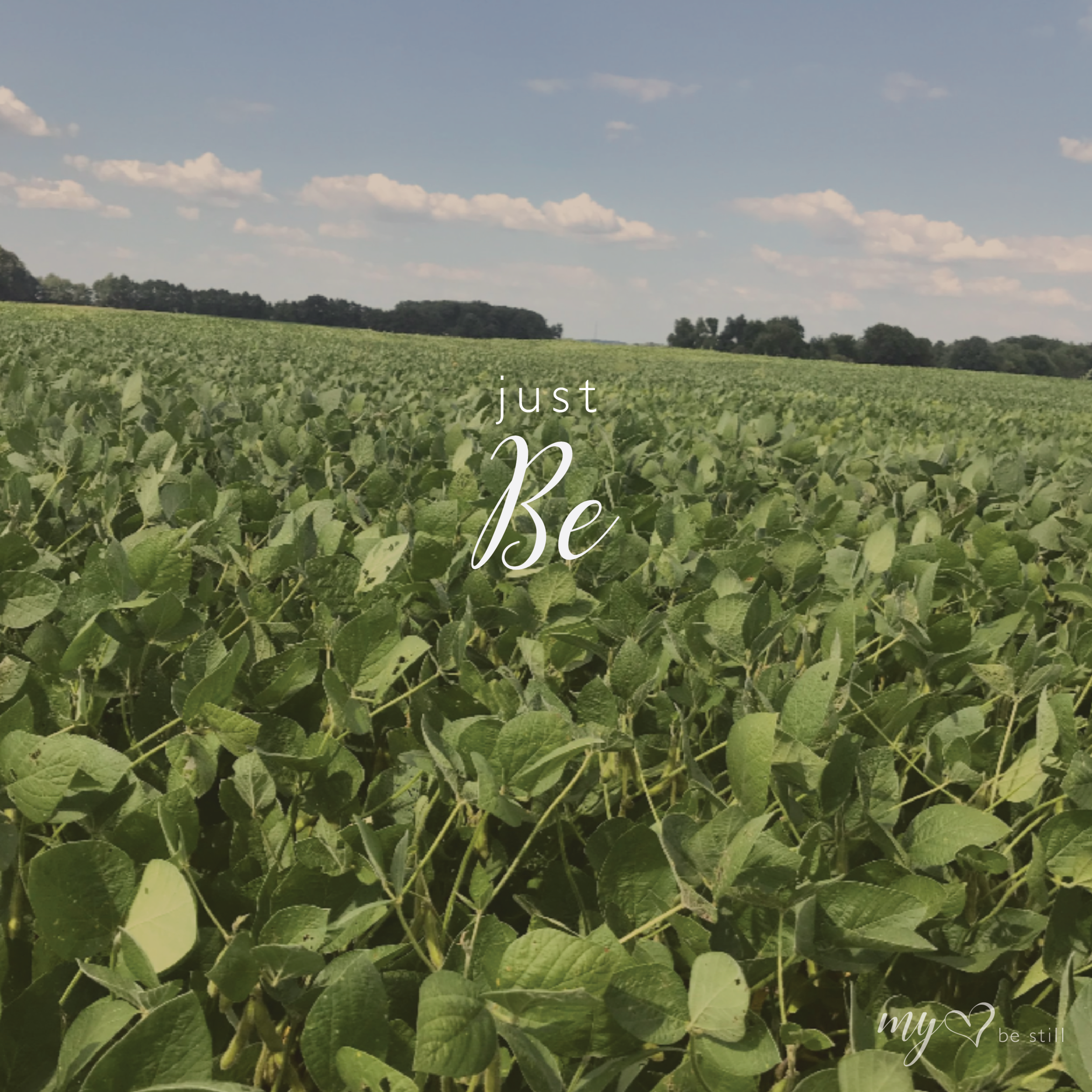 just be-02.png