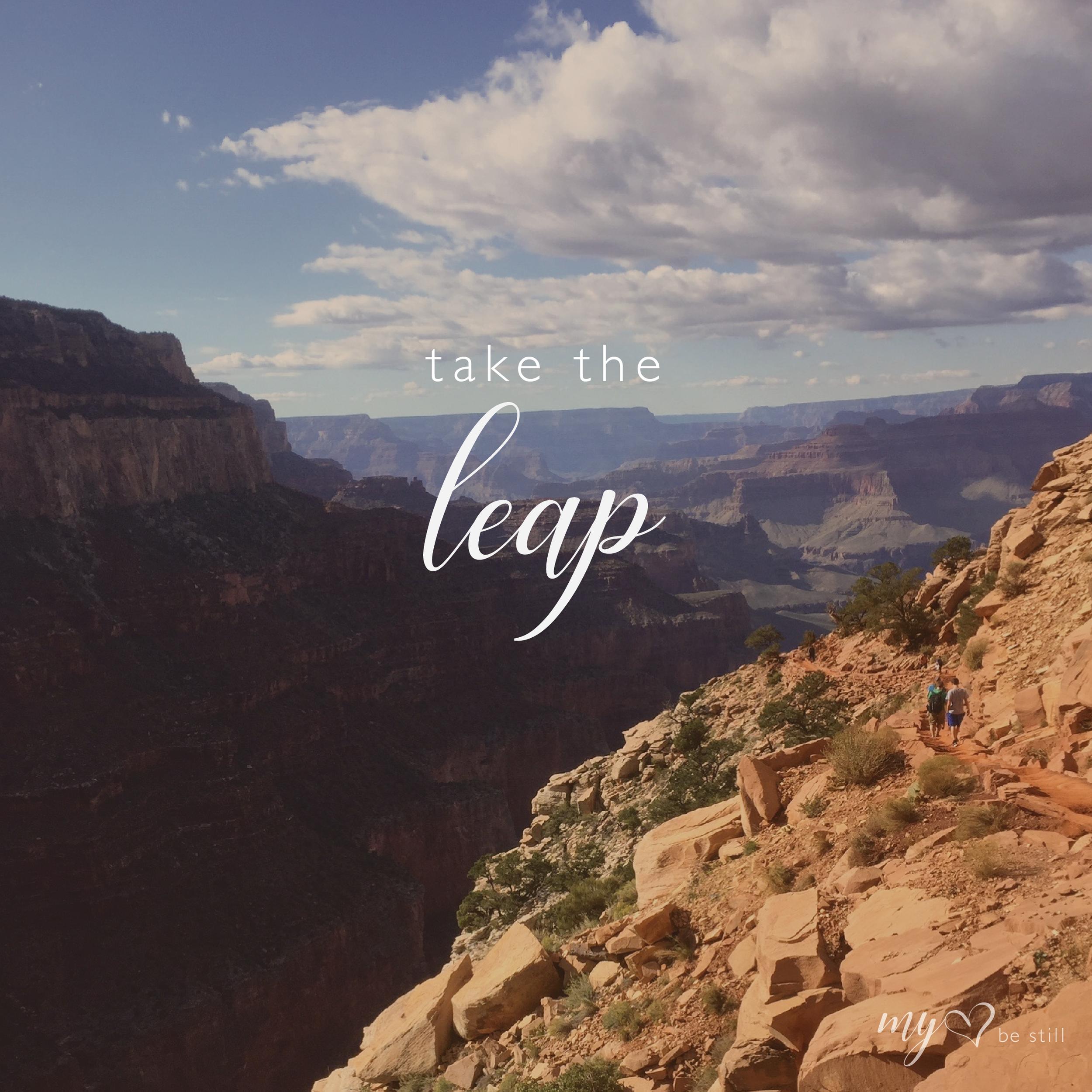 leap-02.png