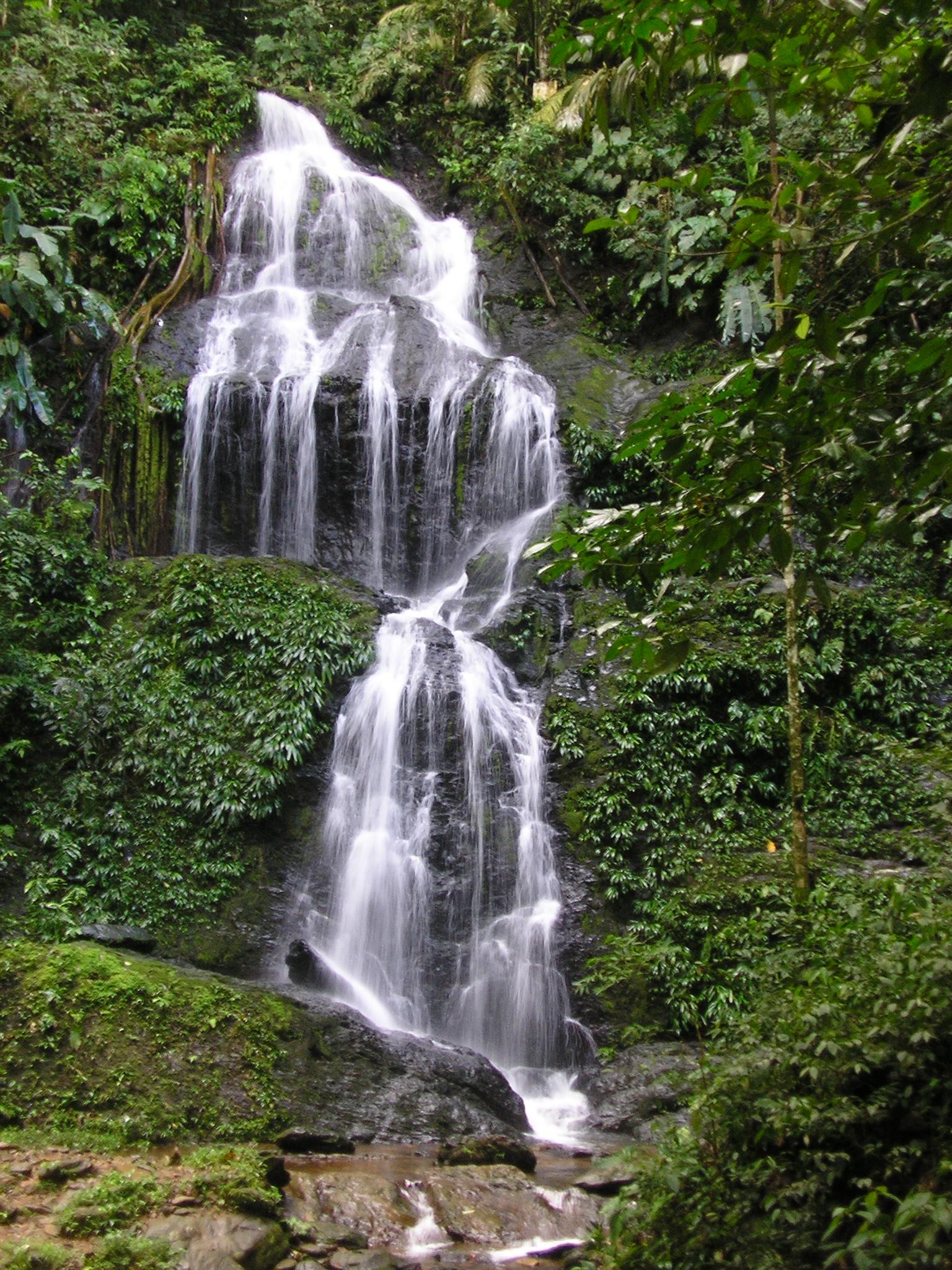 Brownsberg Falls(Suriname).JPG
