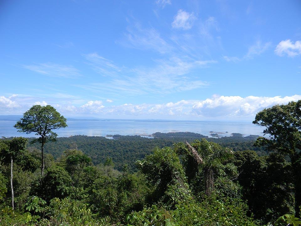 Brownsberg - Stone Island.JPG