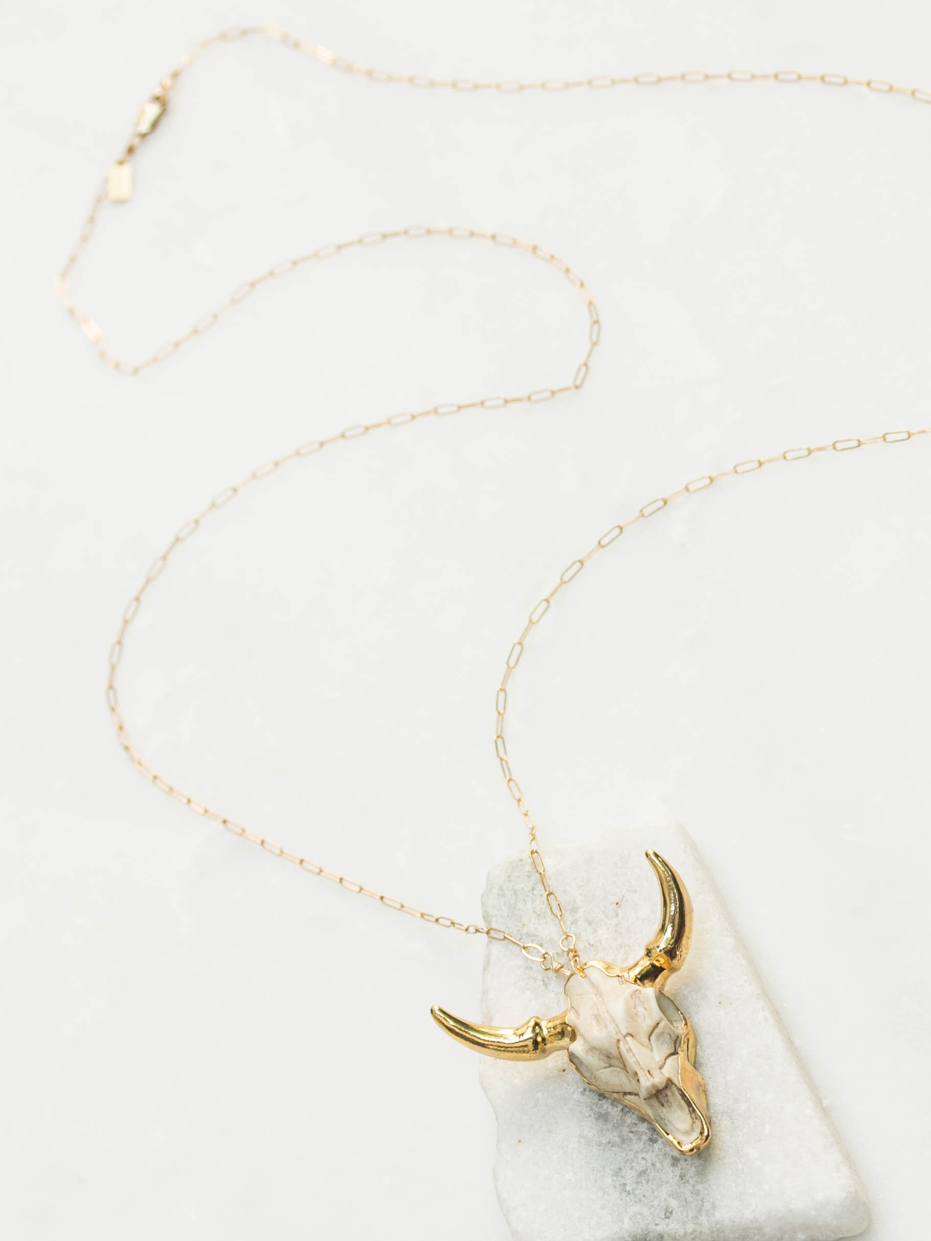 Neutral resin longhorn necklace  $110
