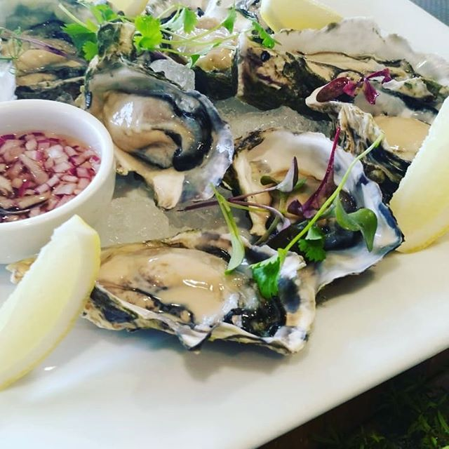 Dinner at your place. Delicious and elegant. We cook for you. And clean up. Of course. When you want to enjoy the comfort of your home or your holiday accommodation, we can provide a personal chef service with all the trimmings----#chefathome #catering #boarddinner #meetings #wedoweddings #oysters #beef #dinner #cheesedessert #plating #summerholidays #airbnb #tutukaka #matapouri