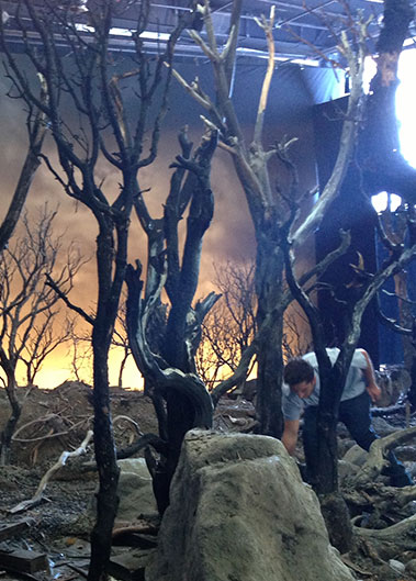 Set Dec & Special Effects