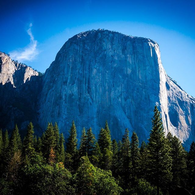 Getting back into the swing of writing, always inspired by this incredible cliff. #yosemite #elcapitan #nationalpark #roadtrip #audiodrama #fiction #podcast #roadtripradio