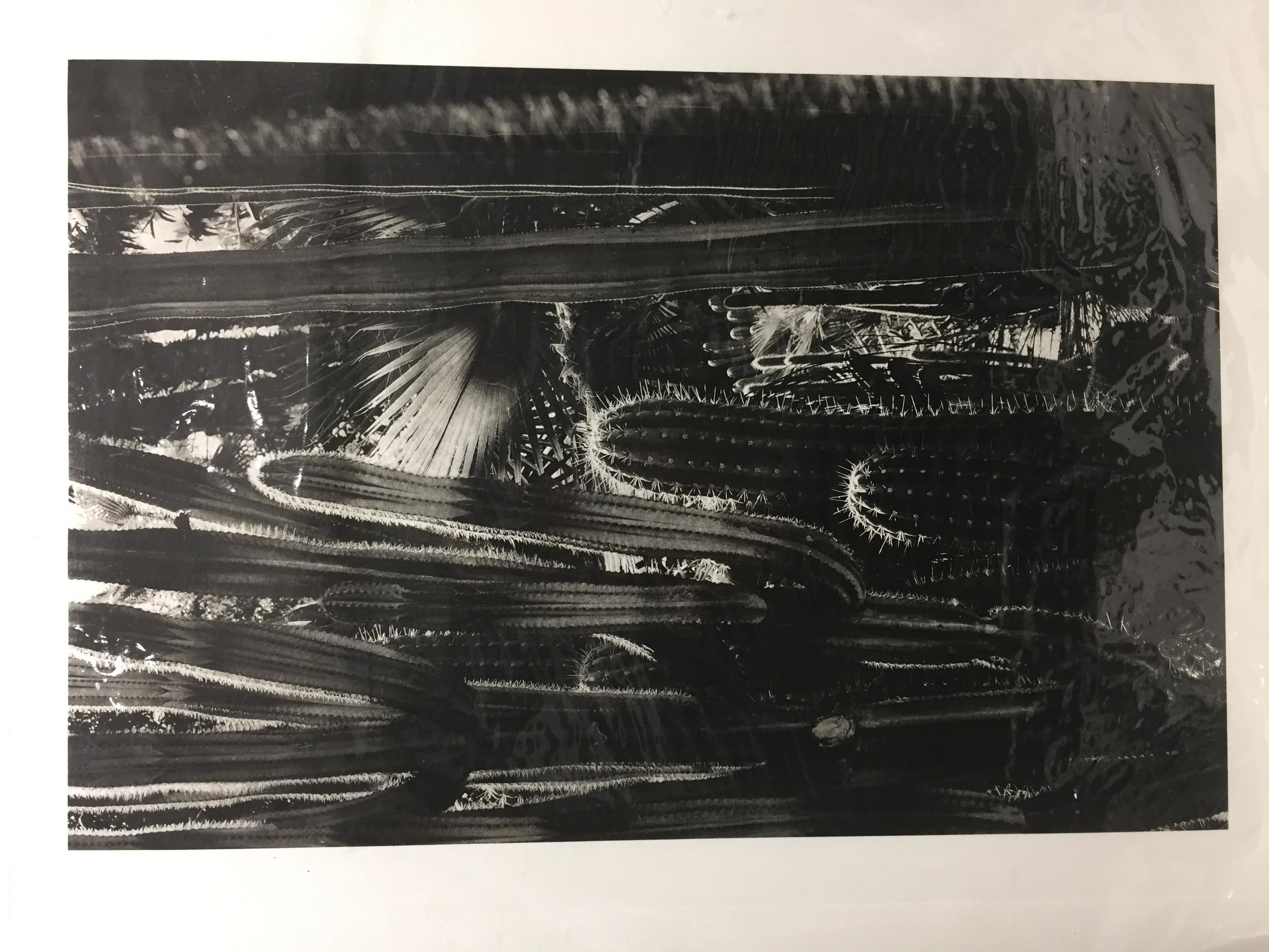 Photogravure proof