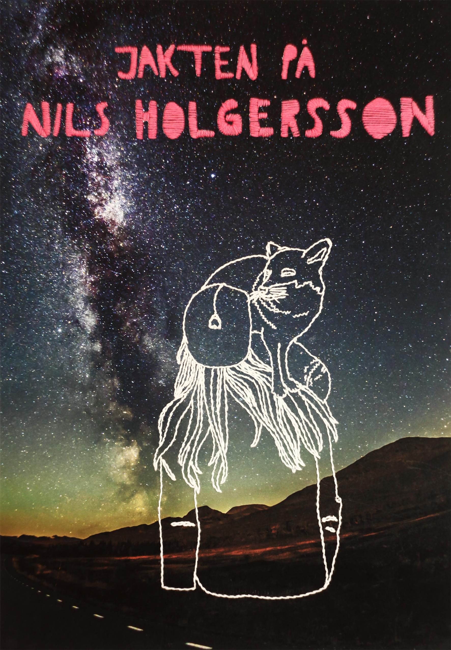 Jakten på Nils Holgersson