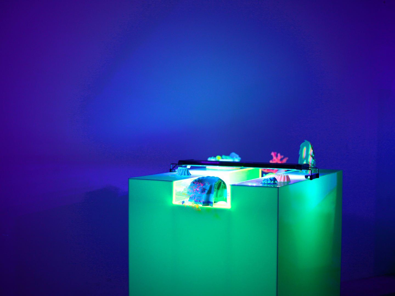 'Touch Tank,' 2019. Plexiglass pedestal, uv‐reactive resin casts, HSS speaker, and LED aquarium light.