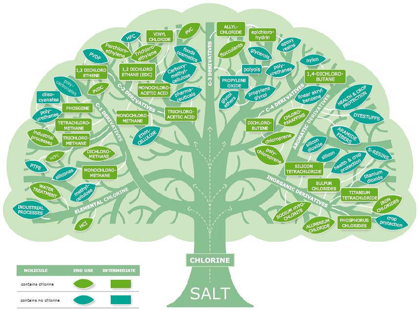 The Chlorine Tree (Euro Chlor  http://www.eurochlor.org/  )