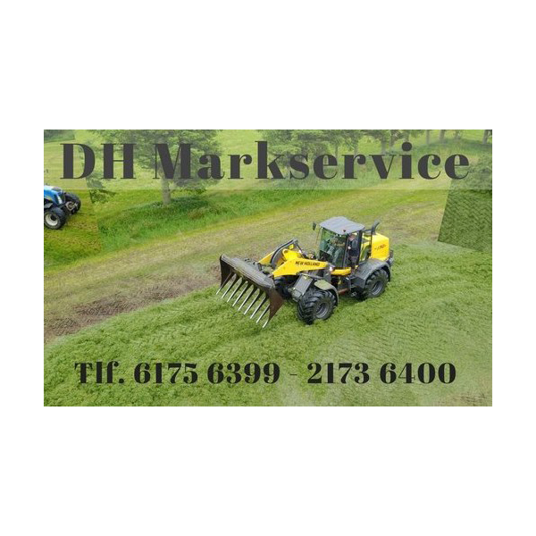 DH Markservice