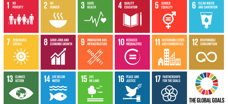 global-goals-for-sustainabili.cdbf27d9.fill-960x440-c100.png