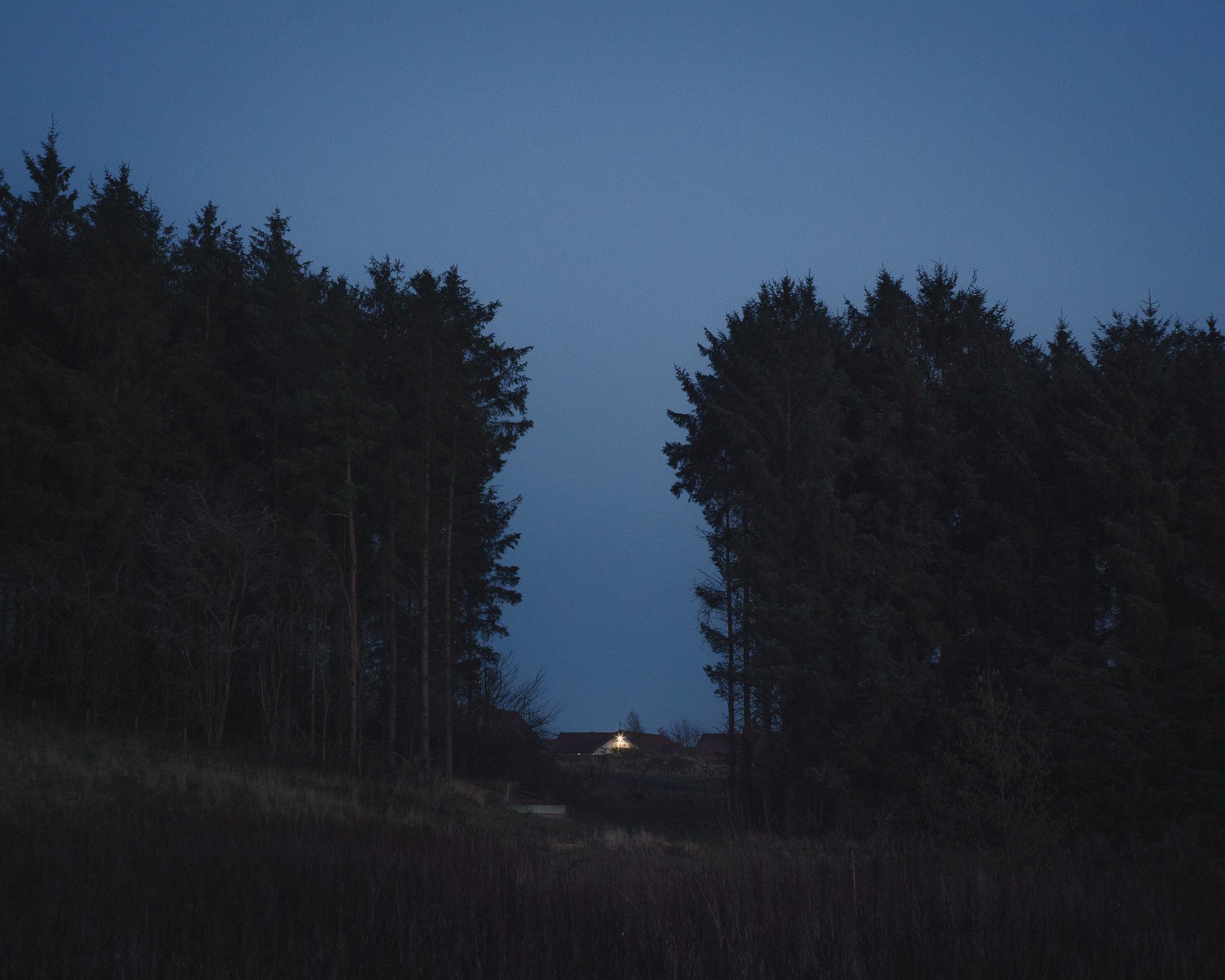 The Way Home-2.jpg