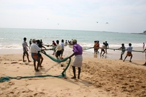 Fishermen pulling in the madal nets
