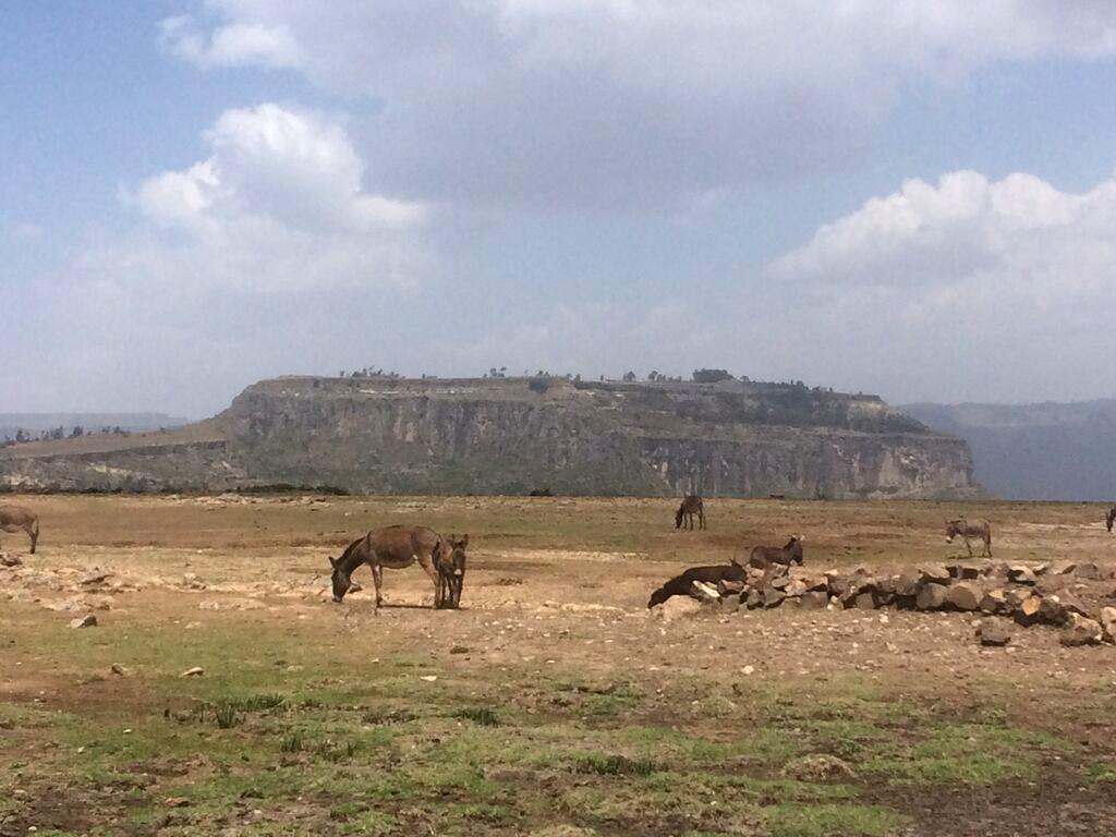 andre-slob_ethiopia_trip_travel_magdala.jpg