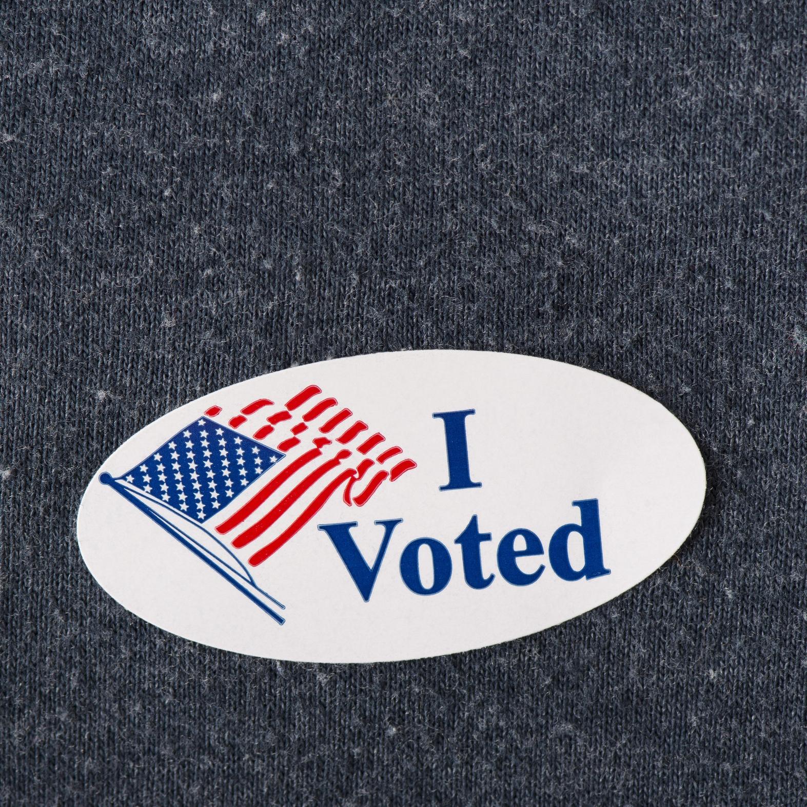 i voted sticker.jpeg