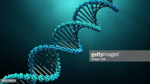 3d illustration DNA molecules
