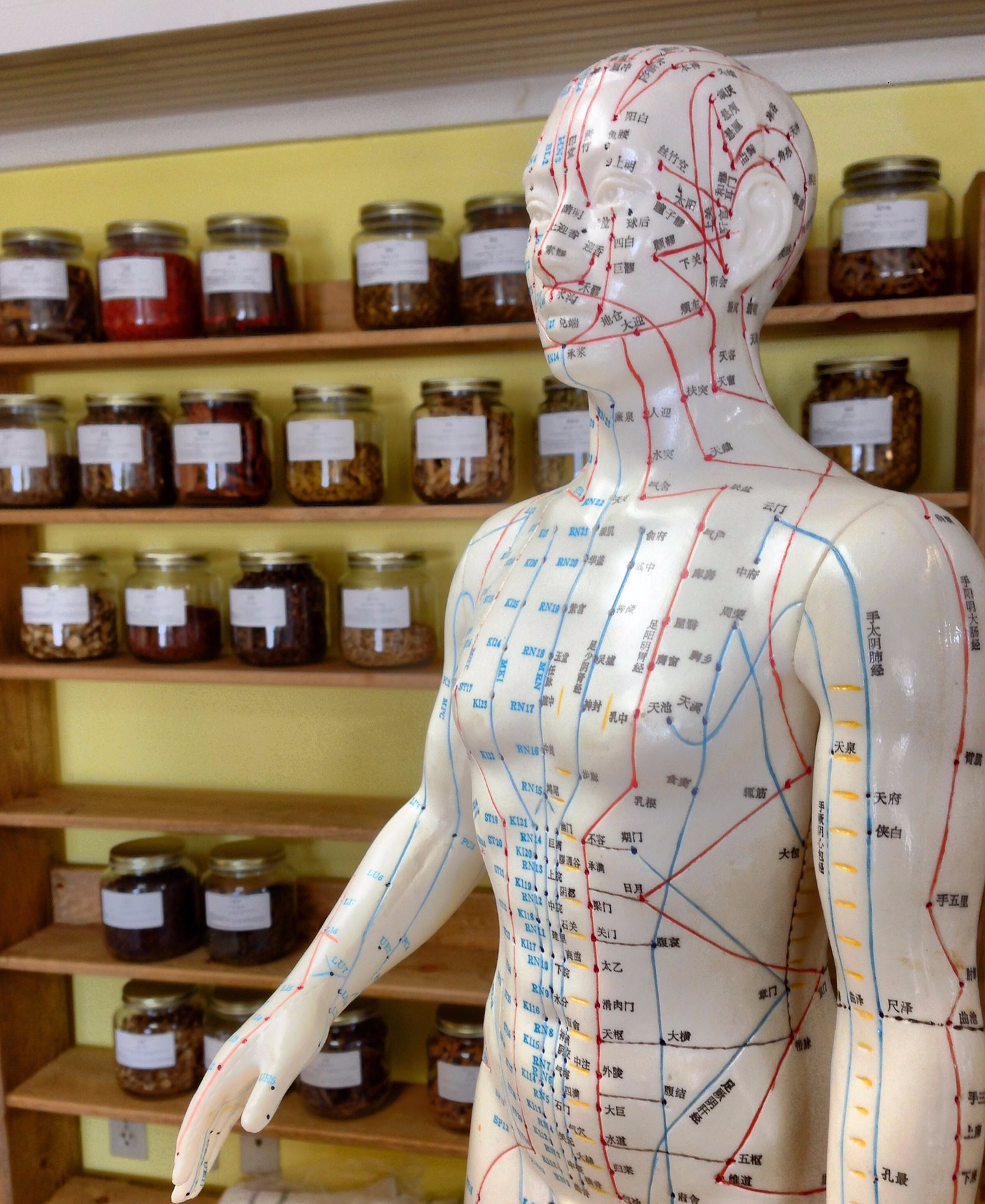Acupuncture - Want to know more about this unique treatment option? Discover the many benefits associated with this form of ancient Chinese medicine and call today to book your session with Brandon, our Acupuncturist, here, at The Compass Rose Health and Wellness Centre.