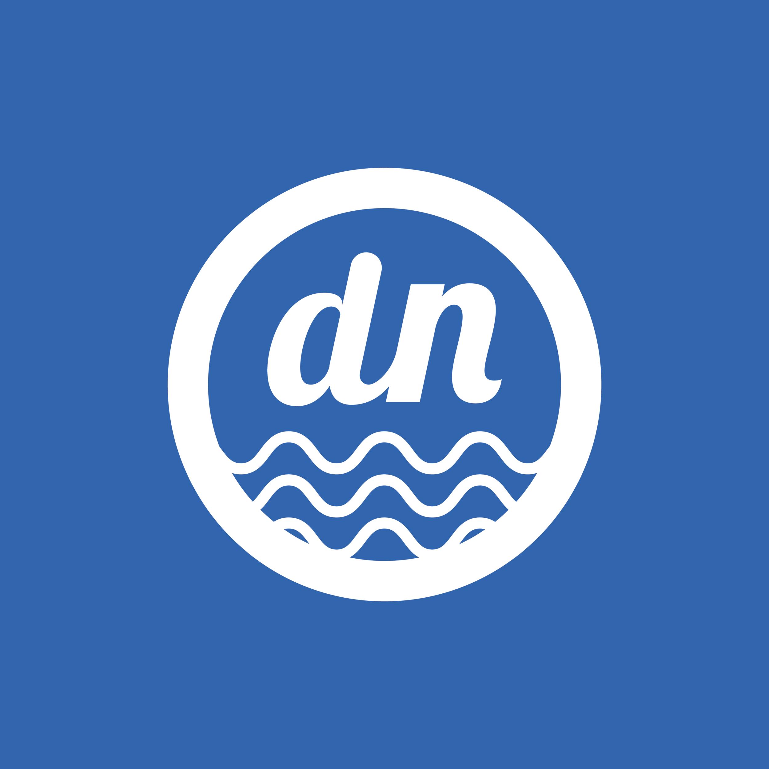 Doodle Noodles Branding Logo Design