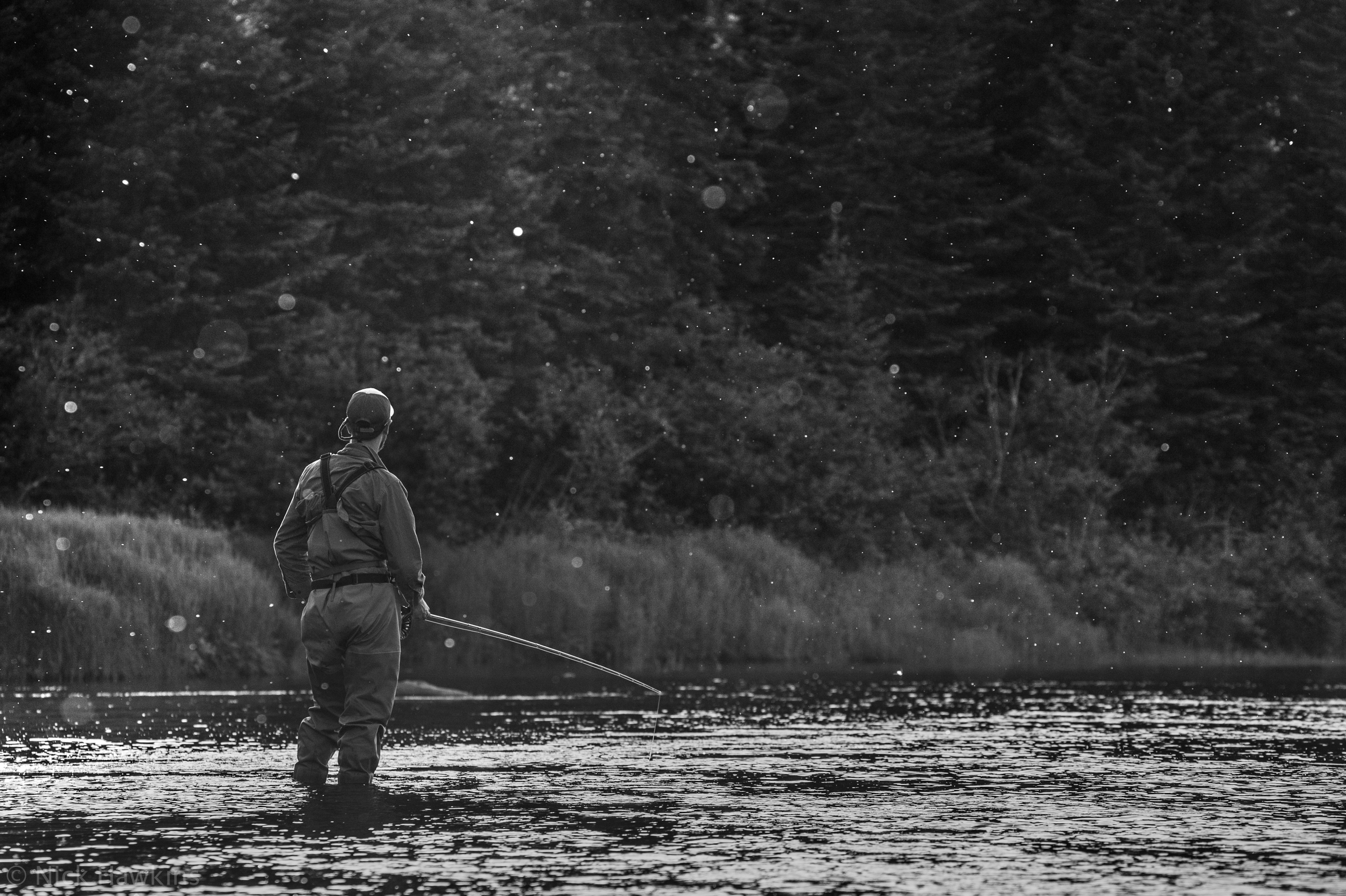 Sons of the River: The Miramichi Enchants a New Generation of Anglers - Atlantic Salmon Journal