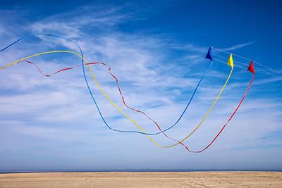 Nauset Kites.jpg
