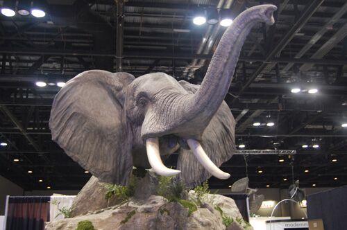 elephant-r500_preview.jpg