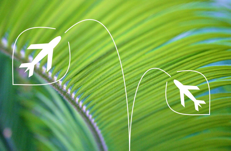 green travel.jpg