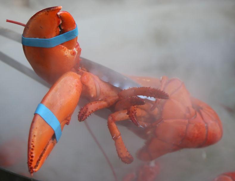 hot lobster.jpg