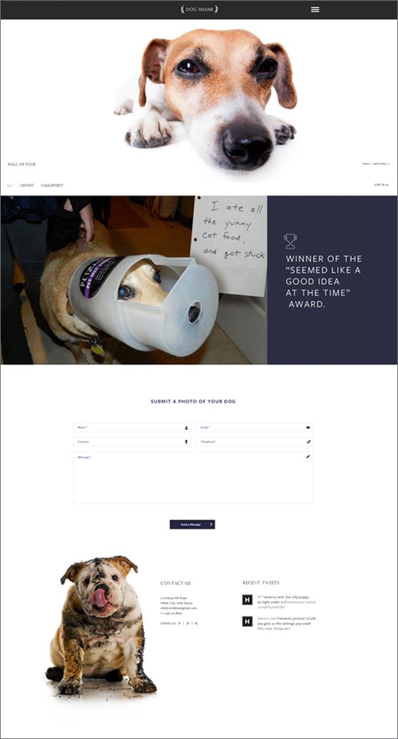 Dog Shame page 2.jpg