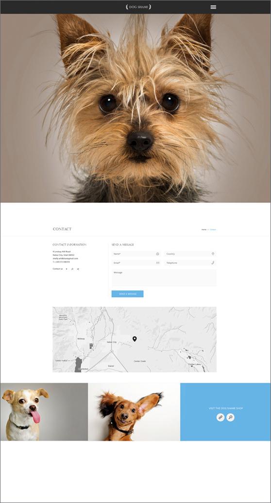 Dog Shame page 3.jpg