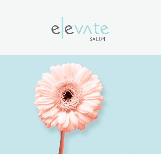 Elevate salon header.jpg