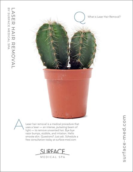 Surface print cactus.jpg
