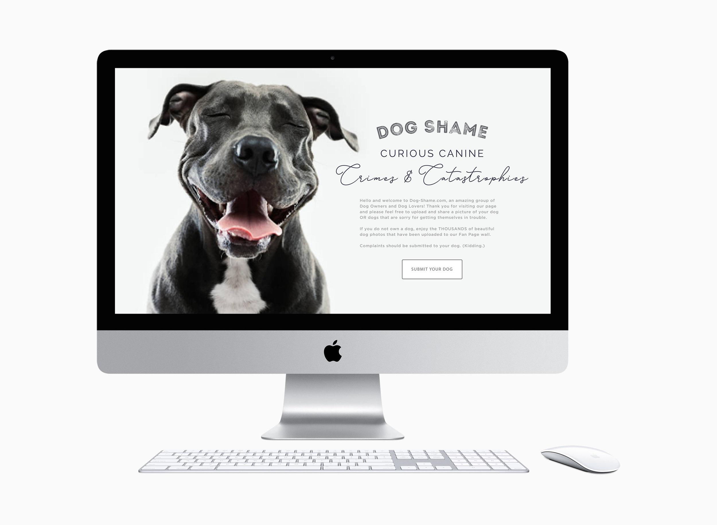 Dog Shame iMac for Portfolio.5.jpg