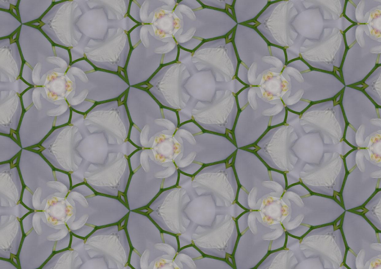 kaleidoskop-stiel2.jpg