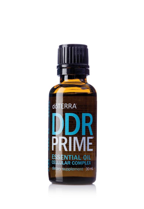DDR Prime®