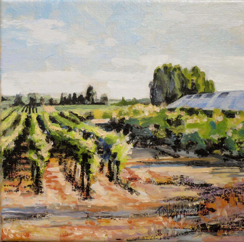 """The Vineyard"" 2017"