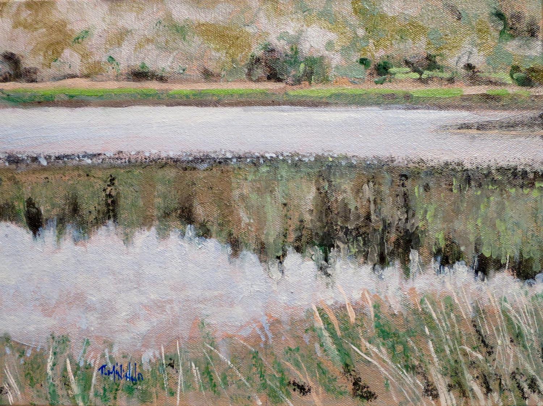 """Spring Lake Grasses"" 2015"