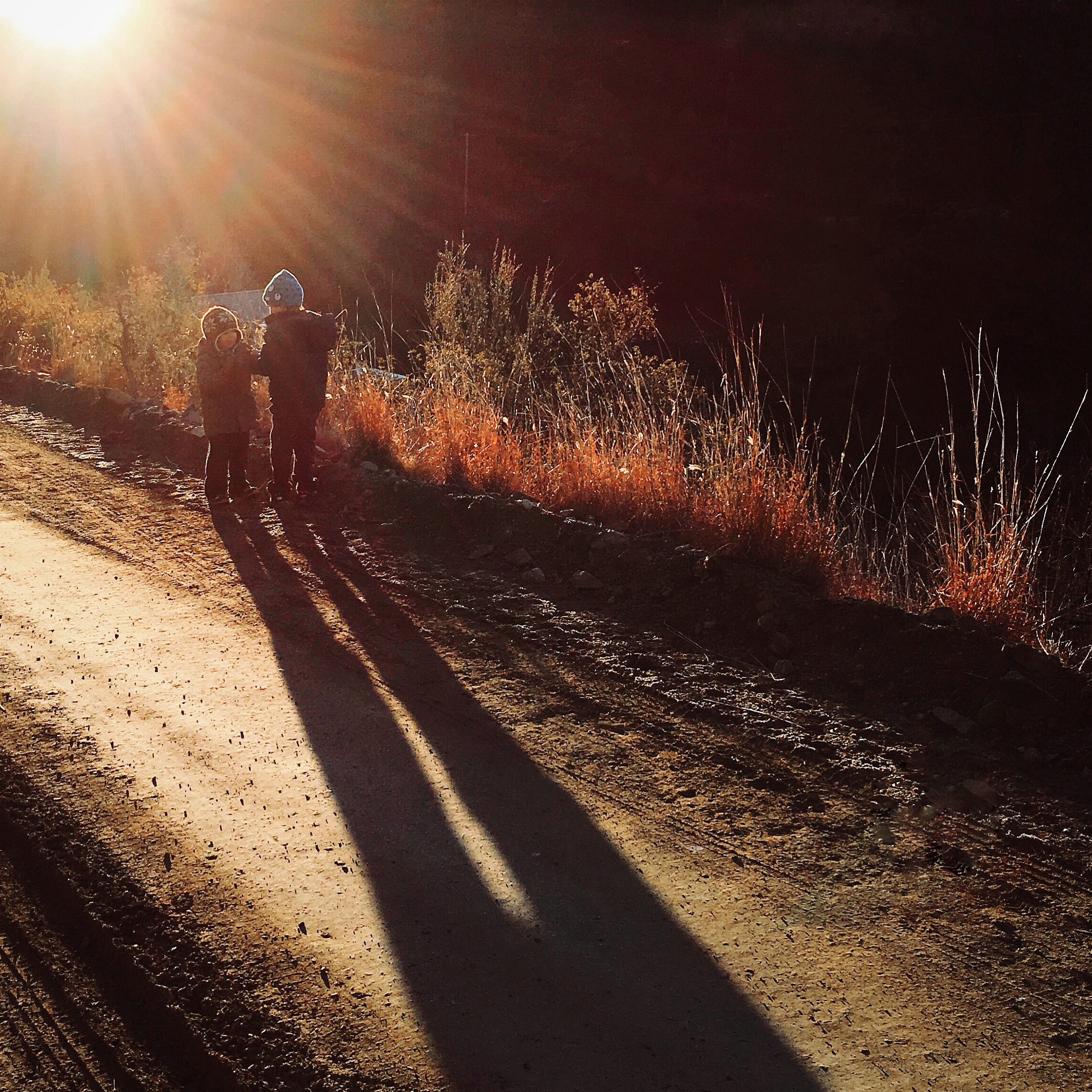 Magic hour:  The light and background came together in Lipkin's photo of an early morning hike in Arizona.