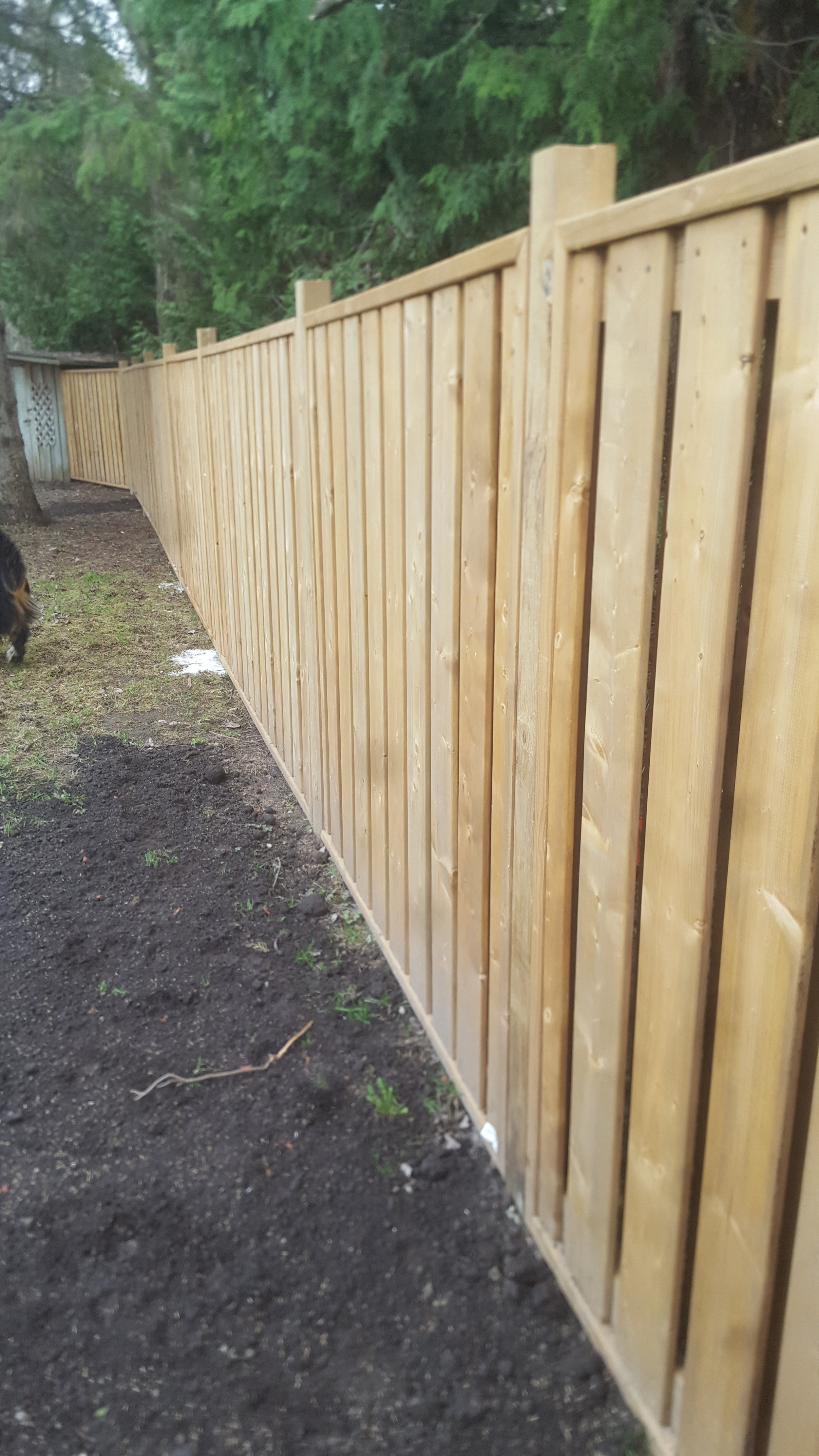 Fences   Looking to add a privacy fence of to fence in your yard or pool? We offer many types of fencing material.