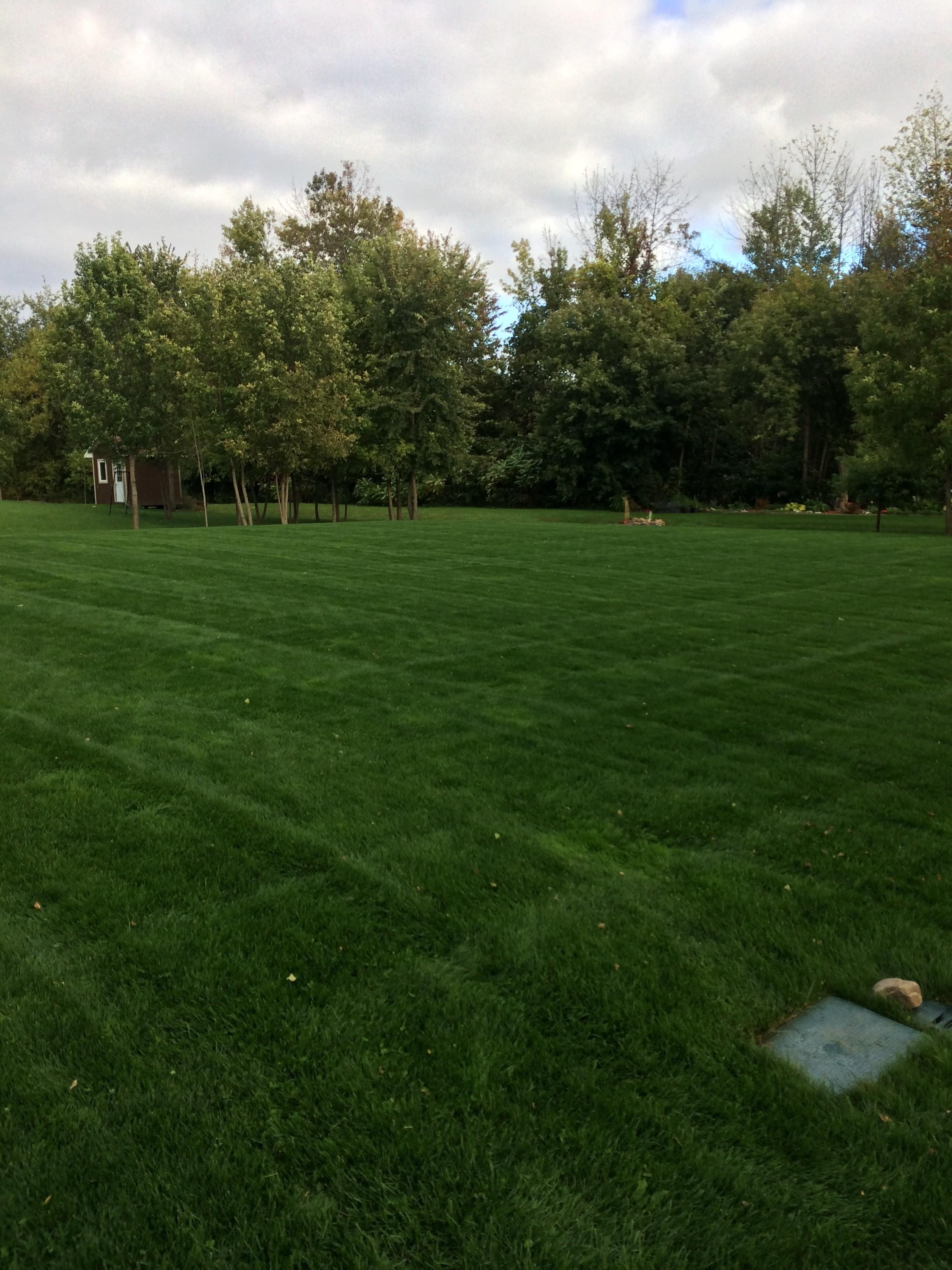 Ottawa's Leading Landscaping Company