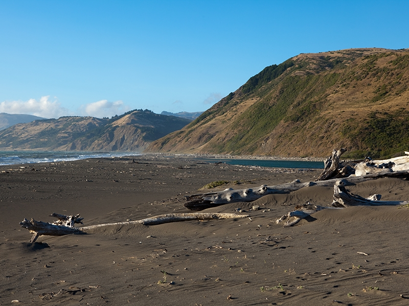king range national conservation area - A spectacular, 64,000 acre coastal wilderness on California's mysterious Lost Coast, offering camping, hiking and wildlife viewing. Find out more here.