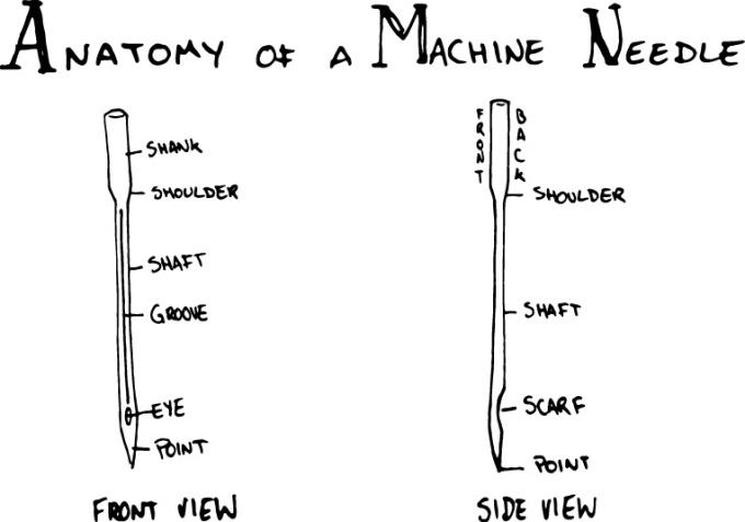 anatomy-sewing-needle.jpg