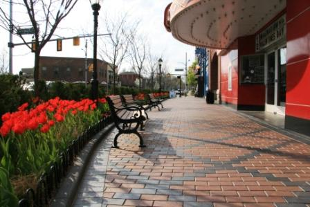 Attract Visitors with These 5 Commercial Landscape Design/Build Ideas in Macomb, MI