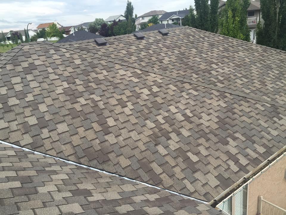 roof16.jpg