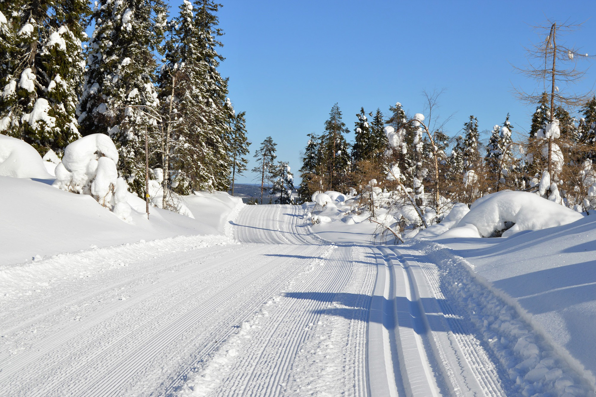 nordic-trail-stock.jpg
