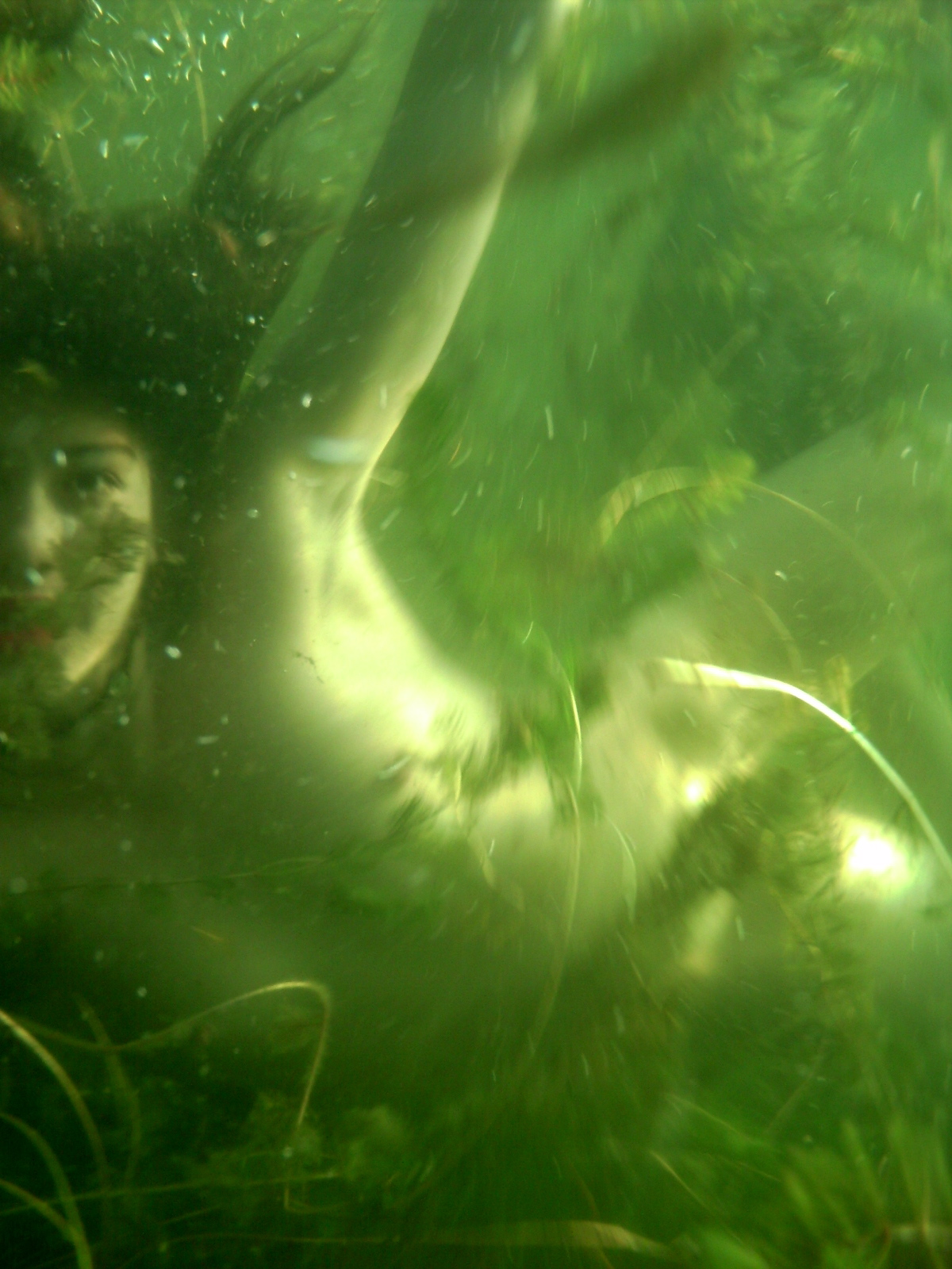 Bacchus Submerged | Mer Installation @ INArtsnw | 2011
