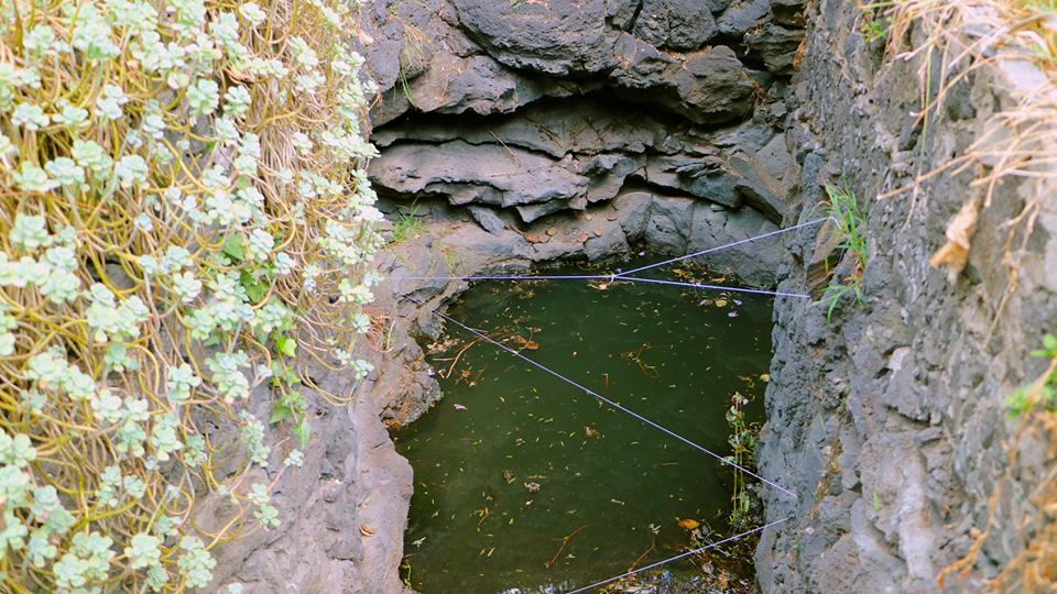Process for Acción Fértil. Installation in natural pond with string. 2018.