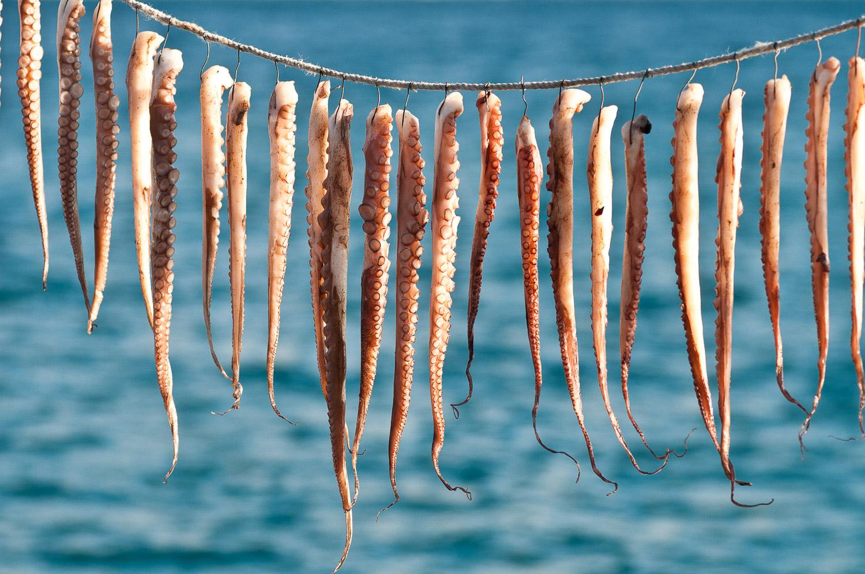 Octupus drying in the sun, Molyvos, Lesvos Island, Greece.