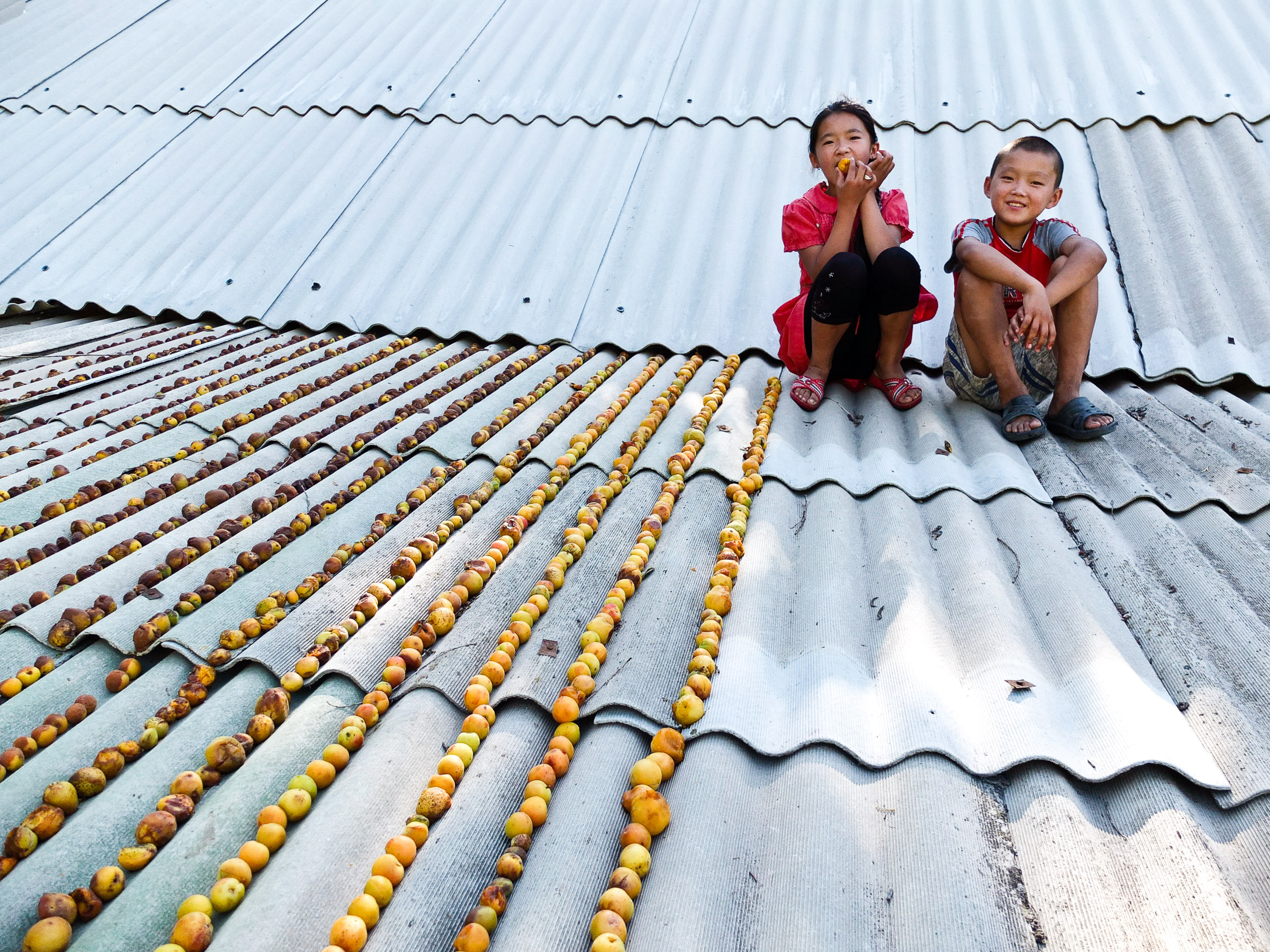 Kids drying apricots on a roof, Kazakhstan.