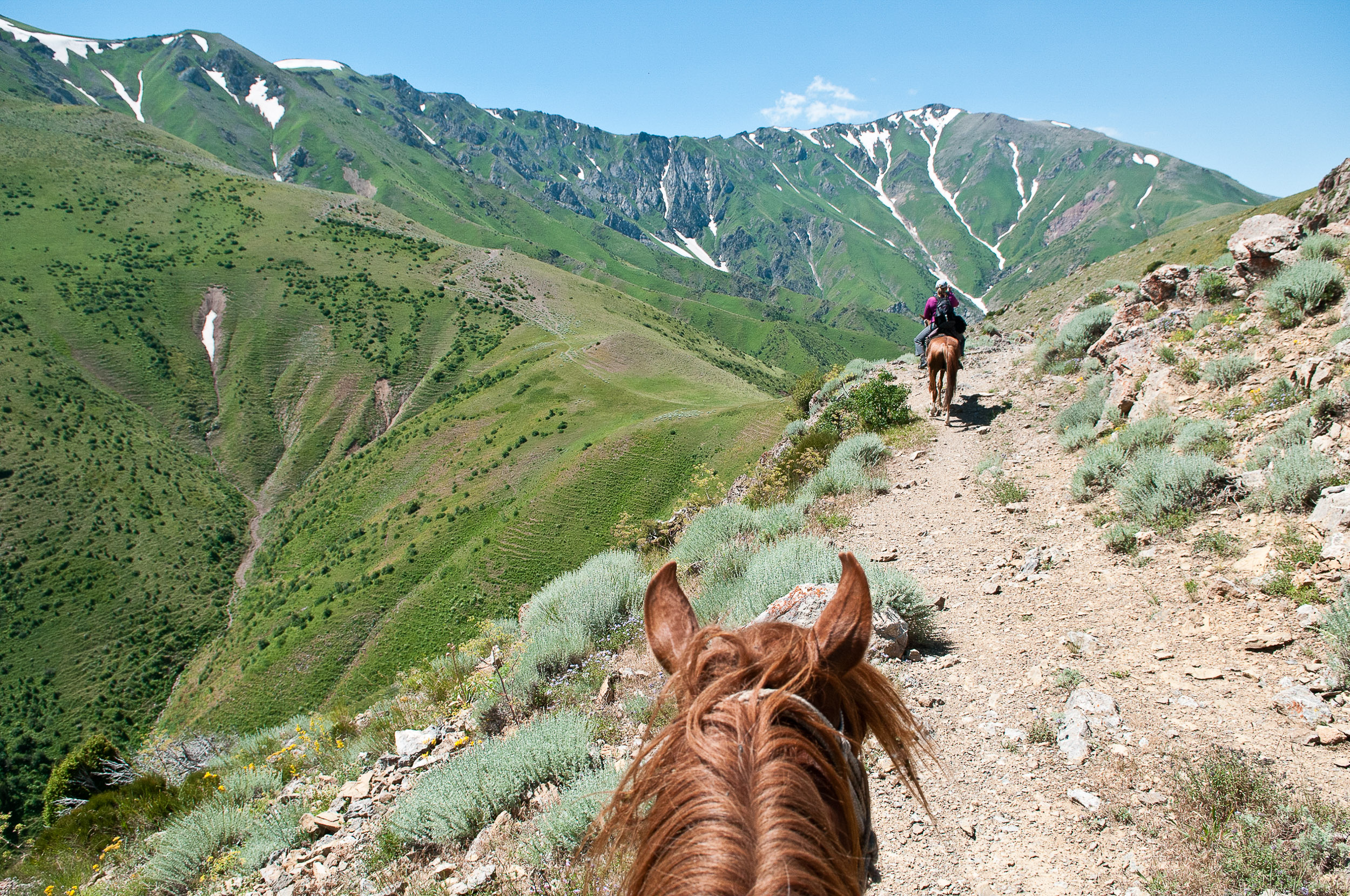 Riding horses into the mountains, Kazakhstan.